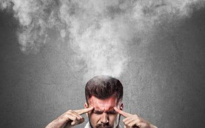 17 idées fausses sur la mémoire (suite et fin)